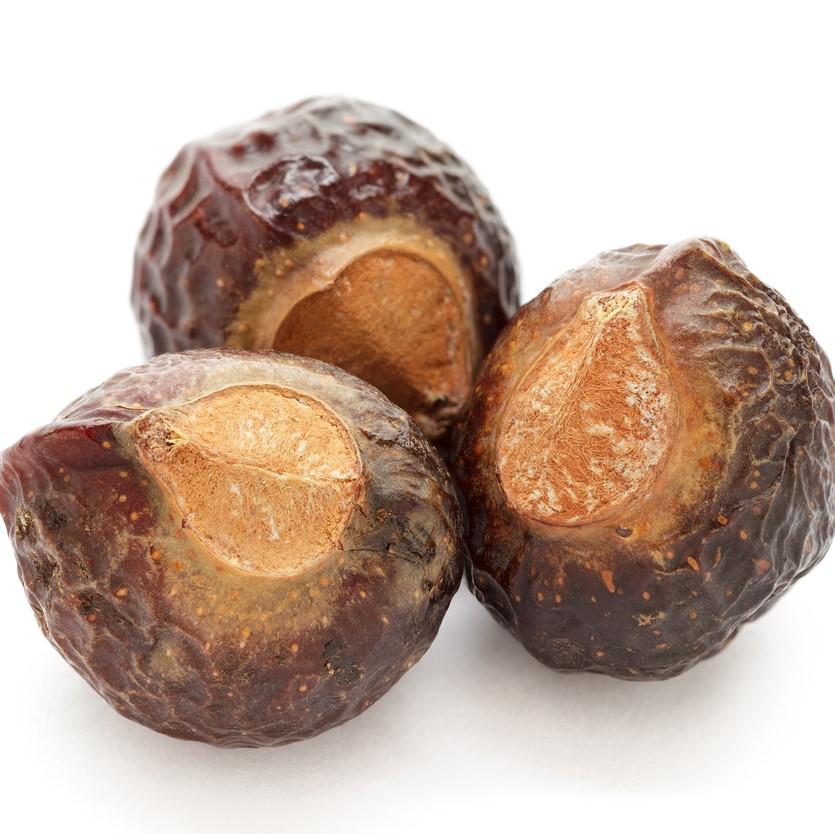 """ネパール、インド、インドネシアなどに広く自生する木 """"ソープナッツツリー""""の木の実を乾燥させたものです。古くから石鹸の代用品として体や髪、衣類用の洗剤など幅広く利用されてきました。昔から洗髪に使われたり、殺菌・消臭効果もあるといわれており、ダニやシラミ退治にも使われていたようです。"""